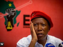 South African political parties are taking an income hit too – of 1.24%